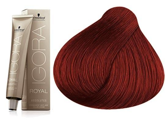 SCHWARZKOPF COLORATION IGORa ROYAL ABSOLUTES 6.60 -SCHWARZKOPF